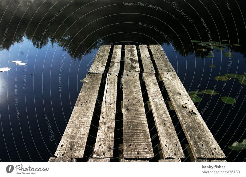 ein alter badesteg Steg ruhig dunkel Seerosen Holz Klarheit blau