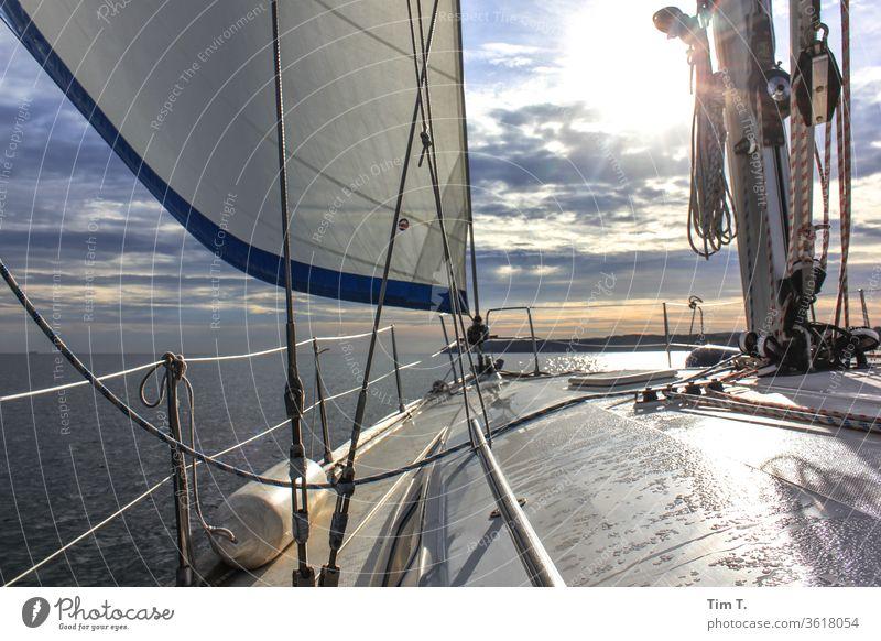 Wetter ok Segelschiff Wasserfahrzeug Meer Segelboot Segeln Schifffahrt Außenaufnahme Farbfoto Menschenleer Bootsfahrt Ferien & Urlaub & Reisen Tag Sommer Jacht