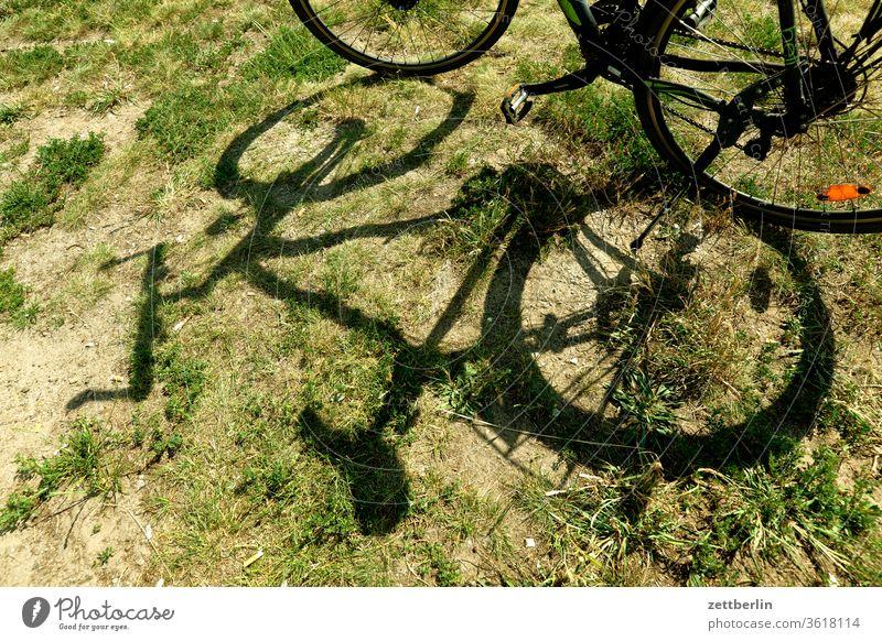 Fahrrad im Gras fahrrad wiese gras licht schatten sonne sommer ausflug radtour fahrradtour rast pause unfall natur urlaub ferien