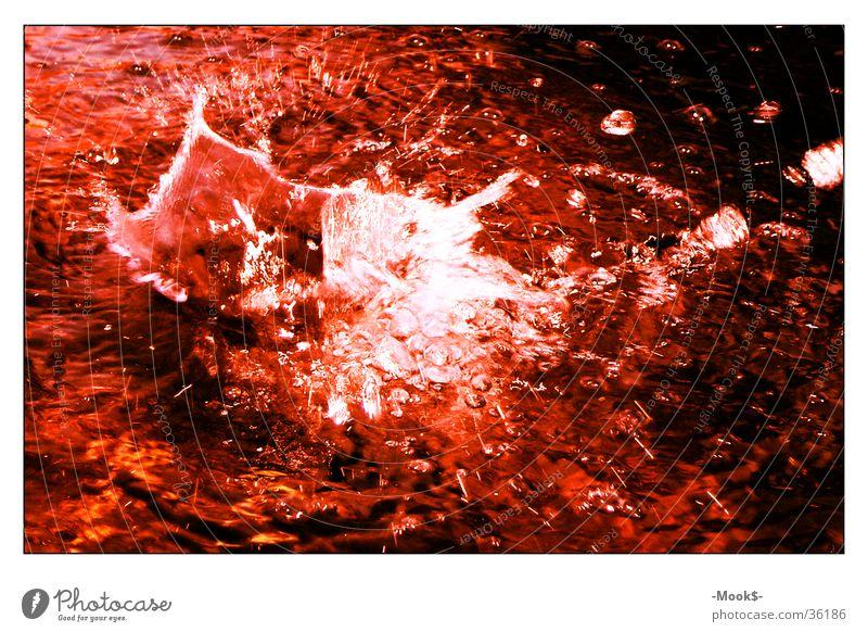 Waterdrop Wassertropfen rot Wellen Stil spritzen Wasserspritzer Teich water waterdrop red nice Blut Kontrast