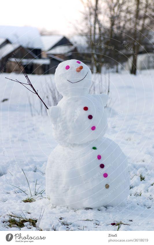Lächelnder Schneemann im Dorf farbenfroh Schaltfläche weiß Glück Knöpfe Möhre Nase Winter im Freien Ast kalt