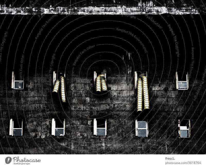 Weshalb da plötzlich Drinageschläuche aus seinen Fenstern hingen, wusste der Flakbunker nicht, aber seit 1945 redete ja auch niemand mehr mit ihm. Bunker Beton