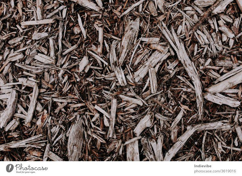 Holzspäne auf dem Boden in verschiedenen Formen und Größen Chip Textur trocknen braun Natur getrocknet Pflanze schwarz organisch Makro Nahaufnahme natürlich