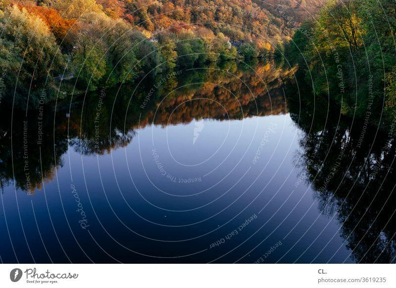ruhr Natur Fluss Wald Baum Wasser See Landschaft ruhig Reflexion & Spiegelung Ruhe Herbst herbstlich Wasseroberfläche Schönes Wetter Idylle