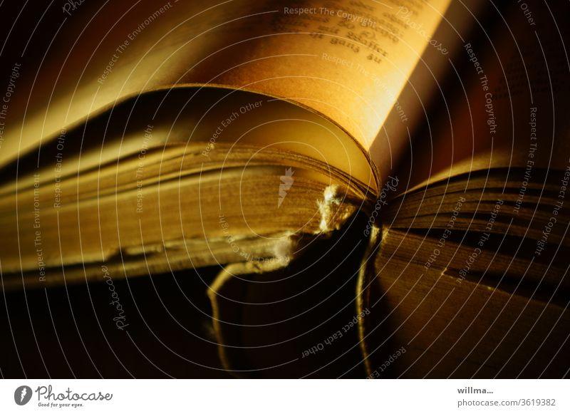 Der Geruch alter Bücher Buch Buchseite vergilbt Lektüre Literatur historisch Wissen nostalgisch antiquarisch Lesestoff alte Schrift Druckerzeugnis Printmedien