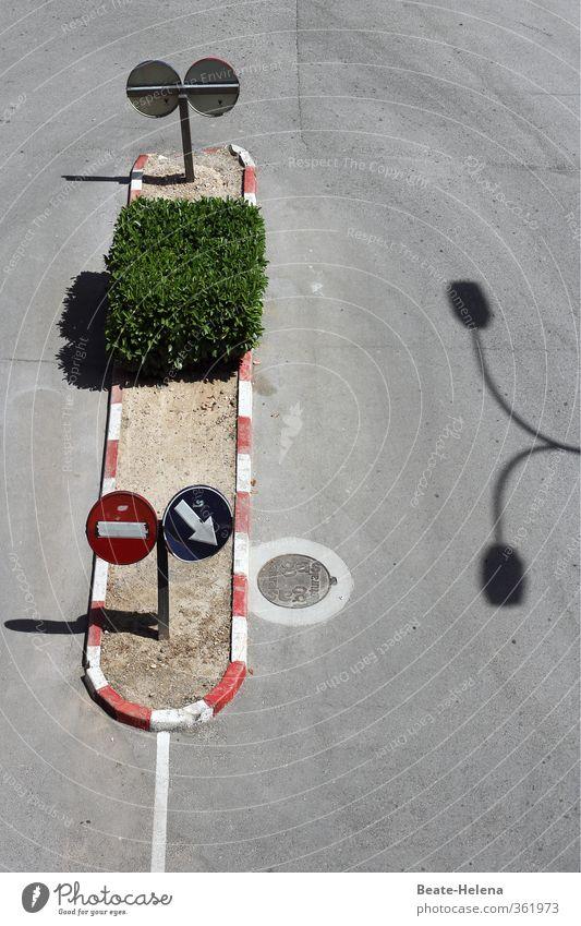 Straßenordnung Ferien & Urlaub & Reisen grün weiß Sonne rot Bewegung Wege & Pfade Verkehr Schilder & Markierungen Schönes Wetter Hinweisschild Reinigen