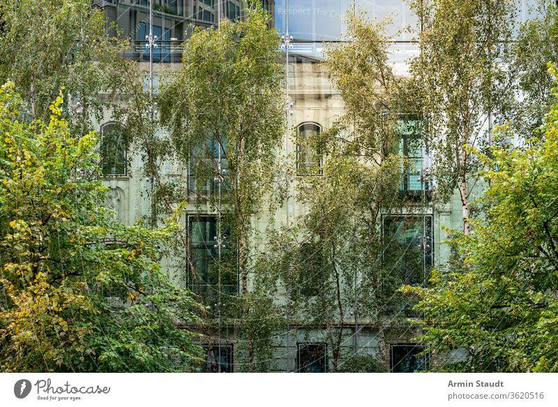 altes Haus hinter einer modernen Glasfassade mit Bäumen im Vordergrund Fassade bedeckt Architektur Natur Gebäude zwei Reflexion & Spiegelung Großstadt urban