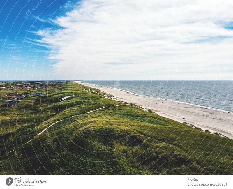 Dünen an der dänischen Nordseeküste im Sommer Dänemark natur landschaft horizont ulraub tourismus küstenlandschaft dünen dünengras strand erholung reisen wolken