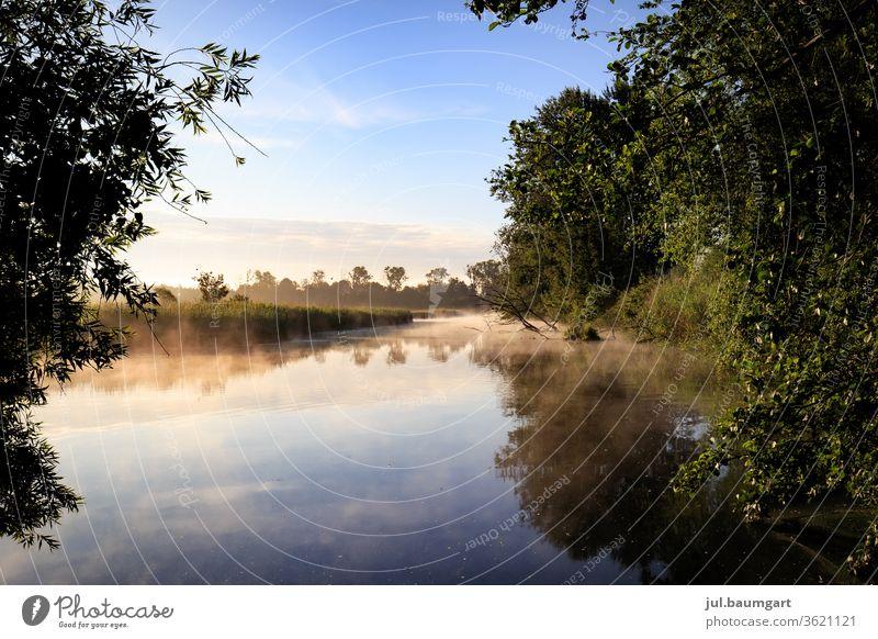 Morgenstimmung am See Sonnenaufgang Sommer Spiegelung Wasser Bäume im See Farbenspiel Reflexion & Spiegelung Landschaft Menschenleer Natur