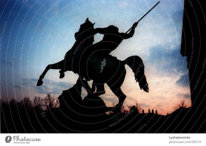 Reiter bei Nacht blau rot dunkel Wildtier Pferd Ausstellung Reitsport Reiter