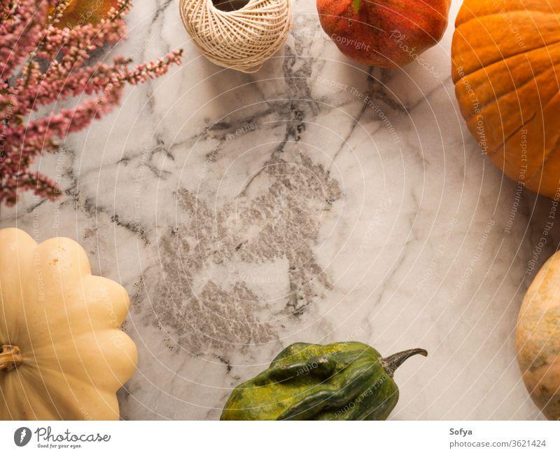Herbst-Ernte-Rahmen Hintergrund Erntedankfest Murmel Kürbis Squash Design Lebensmittel Halloween Saison orange Oktober Einladung Blätter Abendessen Tisch fallen