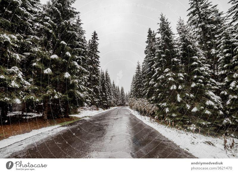 Landschaftliche Ansicht der Straße mit Schnee und Bergen und riesigen Bäumen im Hintergrund in der Wintersaison. Morske Oko Himmel Berge u. Gebirge weiß Riese