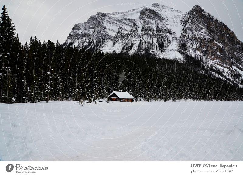 Haus inmitten einer verschneiten Berglandschaft Winter Wolken kalt Textfreiraum Tag Tageslicht Wald Hohe Höhenlage Land Landschaft Berge Natur ländlich Himmel