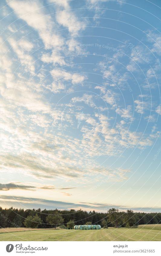 Abendstimmung über einer gemähten Wiese am Waldrand unter einem weiten blauen Himmel mit Wolken mit Blick auf verpackte Strohballen Weite Schäfchenwolken