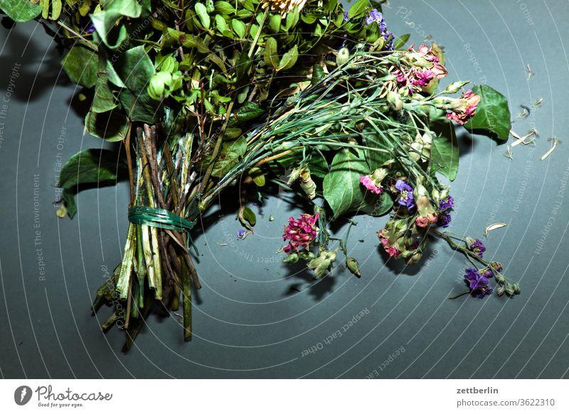 Blumenstrauß again alt blume blumenstrauss blüte farblos geburtstag staubig trocken verblüht vergangen vergangenheit verstaubt vertrocknet verwelkt