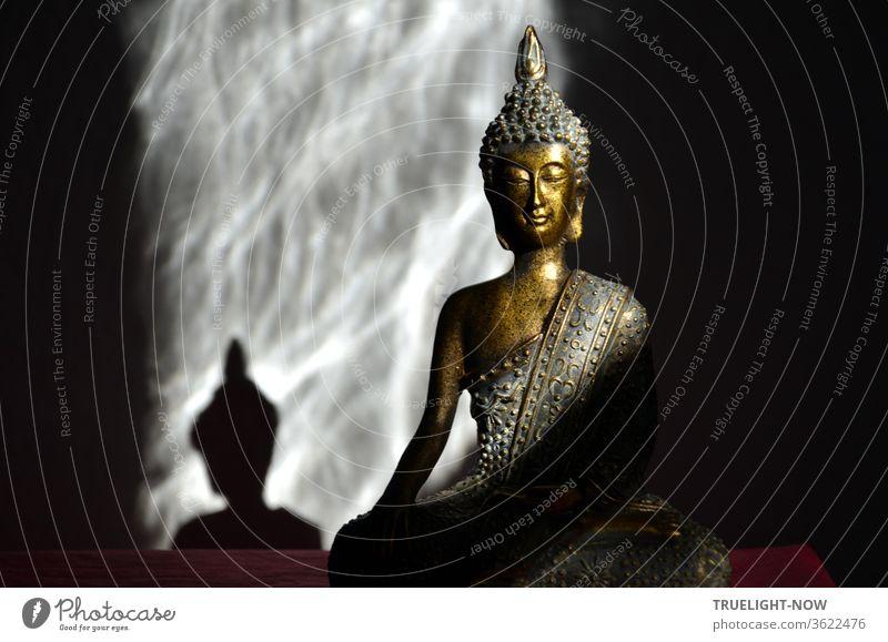 Gold und türkis farbene Buddha Statue im Lotos Sitz zwischen Schatten werfendem Sonnenlicht und Schatten drumherum Buddha-Statue Buddhismus Meditation Weisheit