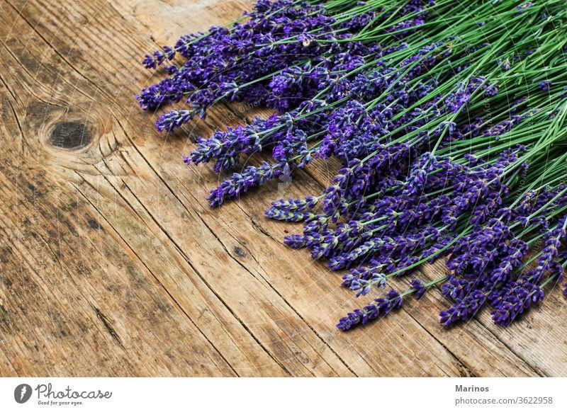 Bündel von Levandern levander natürlich Blume Pflanze Blumenstrauß purpur Kraut Haufen Hintergrund schön Natur hölzern blau Farbe Lavendel Sommer geblümt Garten