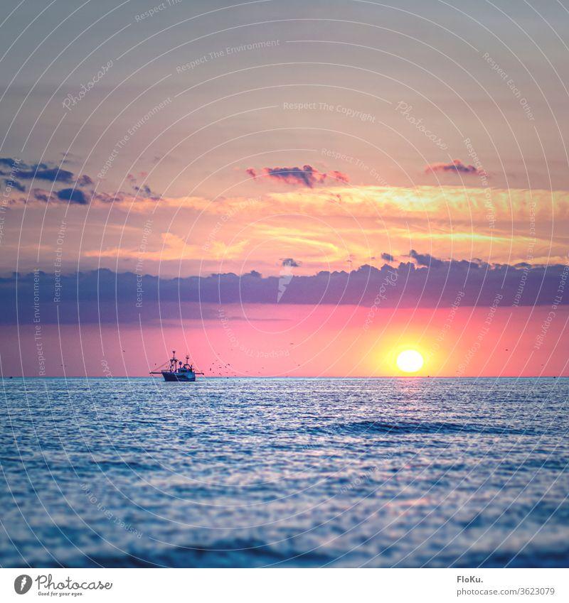 Fischkutter auf der Nordsee hat die Möwen im Schlepptau Sonnenuntergang Meer Strand Wasser Himmel Wellen Küste Wolken Dämmerung Sommer Sonnenlicht