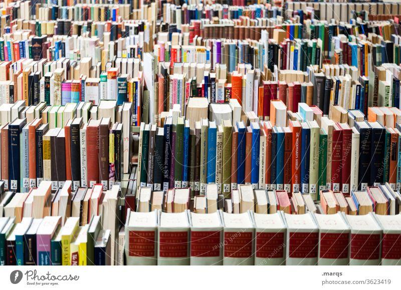 Bibliothek Bildung Studium Buch Ordnung Erwachsenenbildung lernen Gesetze und Verordnungen Antiquariat mehrfarbig Universität Prüfung & Examen Schule viele