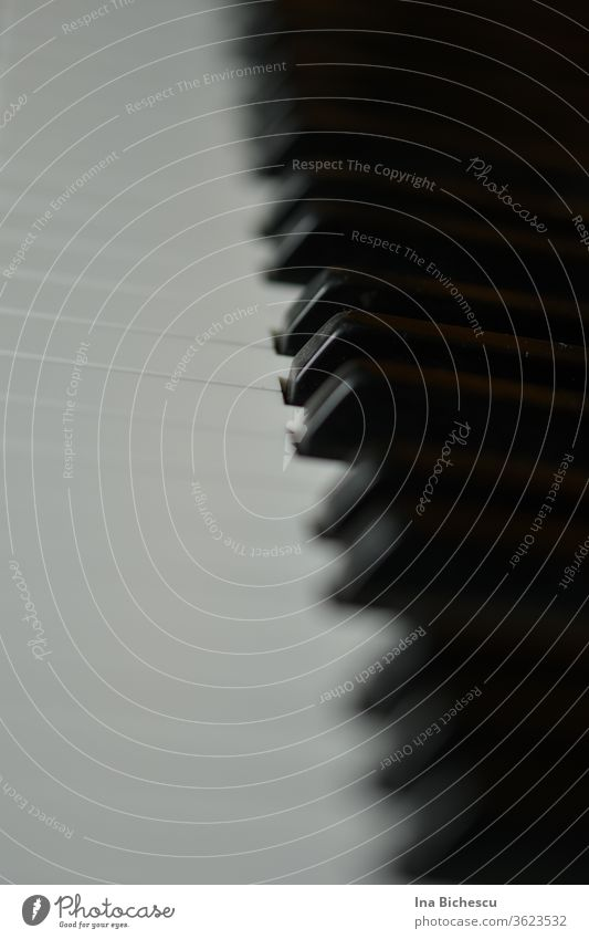 Die Klavier Tasten von der Seite fotografiert, in der Mitte der Tastatur fokussiert. Nur eine weiße und eine schwarze Taste sind scharf, die restlichen verschwinden in Bokeh.