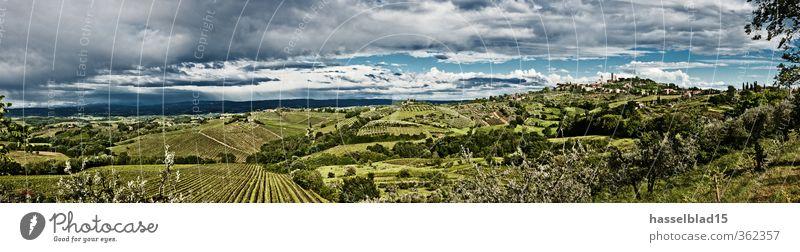 San Gimignano Ferien & Urlaub & Reisen Sommer Erholung ruhig Freude Berge u. Gebirge Leben Lifestyle Freiheit Zufriedenheit Tourismus wandern genießen Ausflug