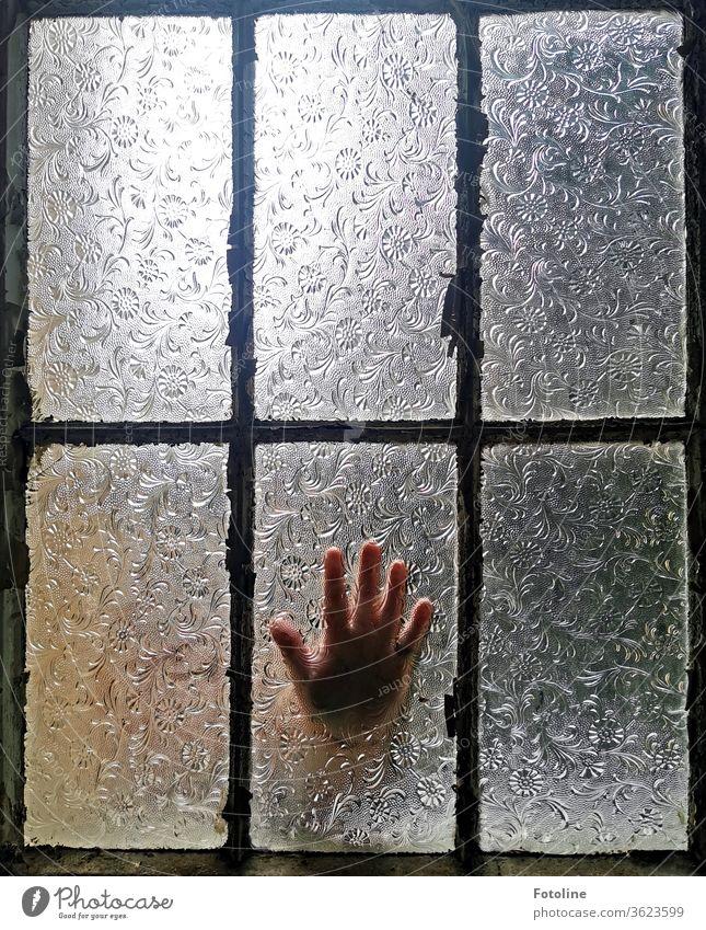 Hallo? Jemand zu Hause? - oder eine Hand, die an ein geschlossenes Fenster klopft Architektur Gebäude Farbfoto Fensterrahmen Fensterglas Fensterscheibe