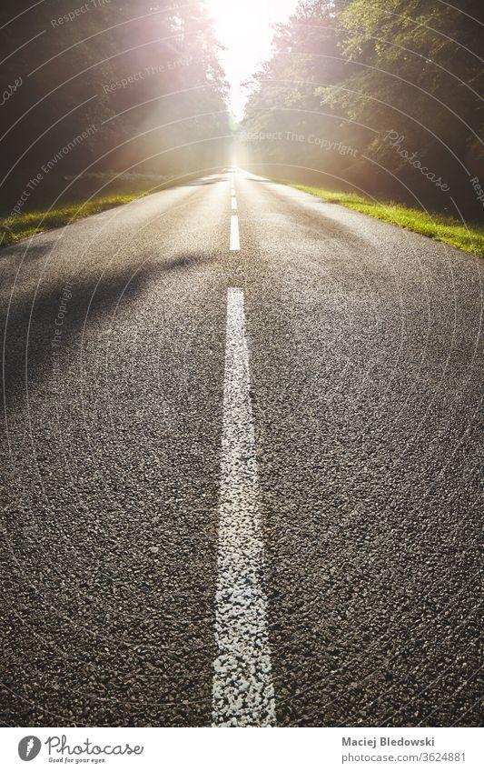 Nasser Asphaltweg im Wald gegen die Sonne. Straße Autobahn Natur leer Sonnenuntergang Geschwindigkeit Weg Laufwerk Sonnenaufgang niemand Ausflug Verkehr Route