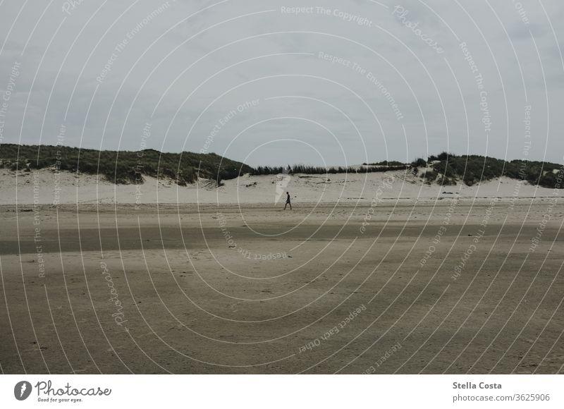 Einzelne Person beim Spaziergang im Watt mit einer Dünen Landschaft im Hintergrund Nordsee Ferien & Urlaub & Reisen Außenaufnahme Küste Erholung Farbfoto Strand