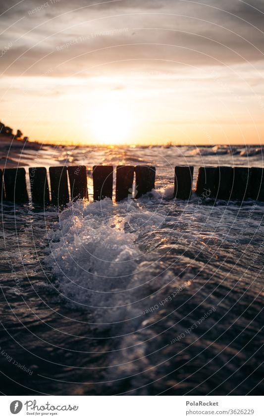 #A# Ostsee-Buhnen zum Sonnenuntergang Sonnenaufgang Buhnen in der See Natur Ostseeinsel ostseebad Urlaubsort Erholung Küste Urlaubsstimmung Idylle Meer