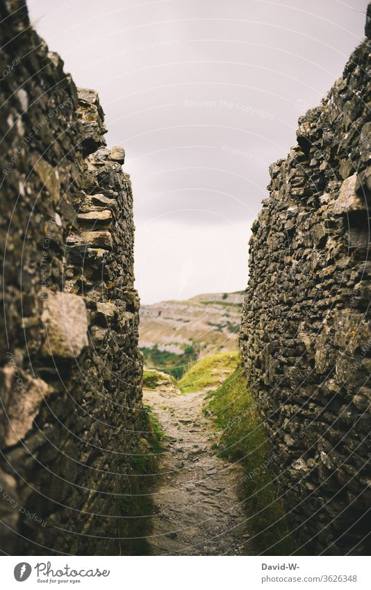 ein Weg zwischen alten Mauerresten einer Ruine Pfad Mittelalter früher verlassen Geheim Ziel der Weg ist das Ziel hindurch Route Natur Farbfoto Wege & Pfade
