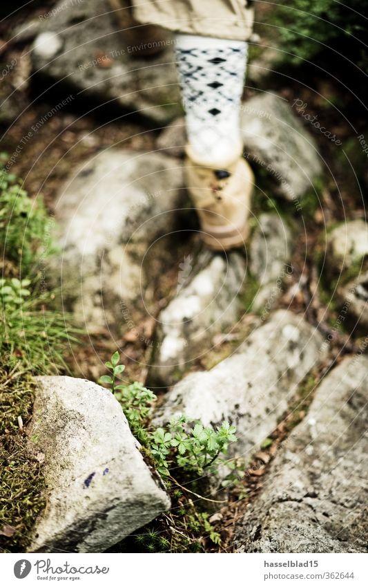 Norwegen Wandern Aktivurlaub Mensch Jugendliche Ferien & Urlaub & Reisen Sommer Freude Erwachsene Ferne Berge u. Gebirge Leben Senior Freiheit Beine Fuß