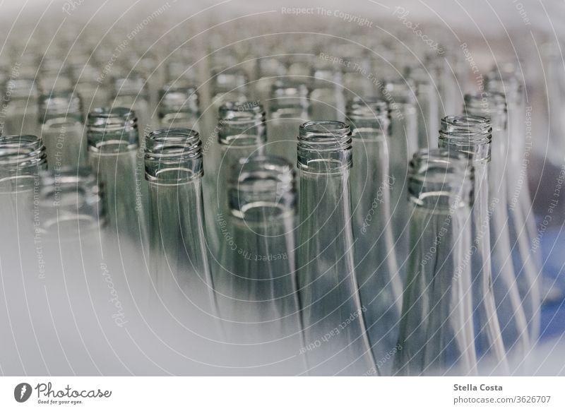 Leere Weinflaschen werden im Weinkeller für die Abfüllung gelagert Innenaufnahme Winzer abfüllung Alkohol Menschenleer Farbfoto Schwache Tiefenschärfe