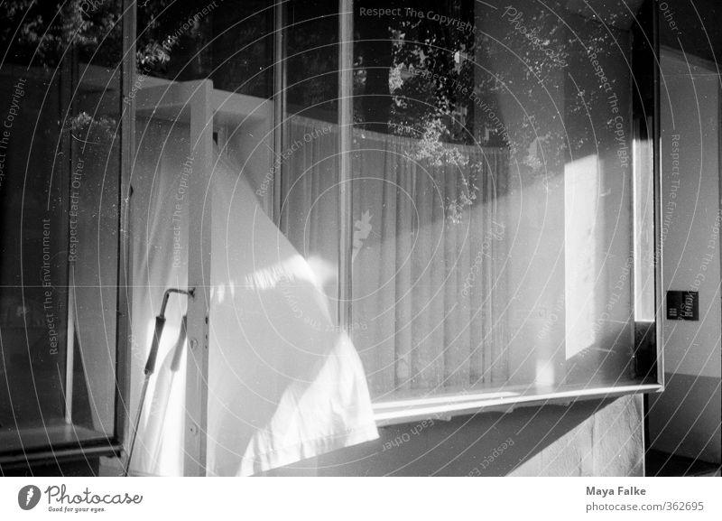 """brise Stadt Menschenleer Fenster Stimmung Schaufenster """"Brise,"""" Wind Vorhang Refelxion Sommer Frühling Schwarzweißfoto Außenaufnahme Tag Abend Licht Schatten"""