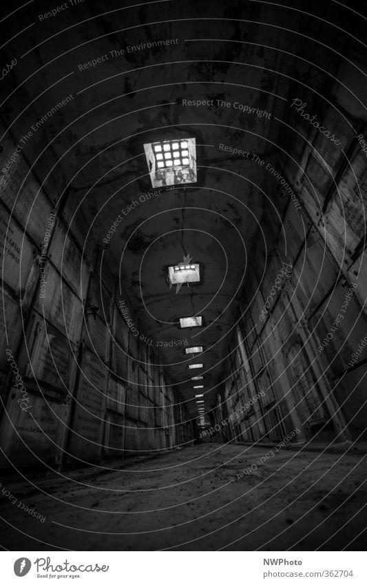 in der gruft Natur alt Stadt Ferne kalt Wand Gefühle Mauer Stein Metall außergewöhnlich Beton Kirche Ausflug Abenteuer Hoffnung