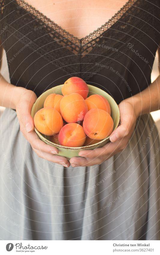 junge Frau hält eine Schale mit frischen Aprikosen vor sich in den Händen Sommer Frucht saftig Vitamin Gesunde Ernährung Junge Frau Obst Hand genießen