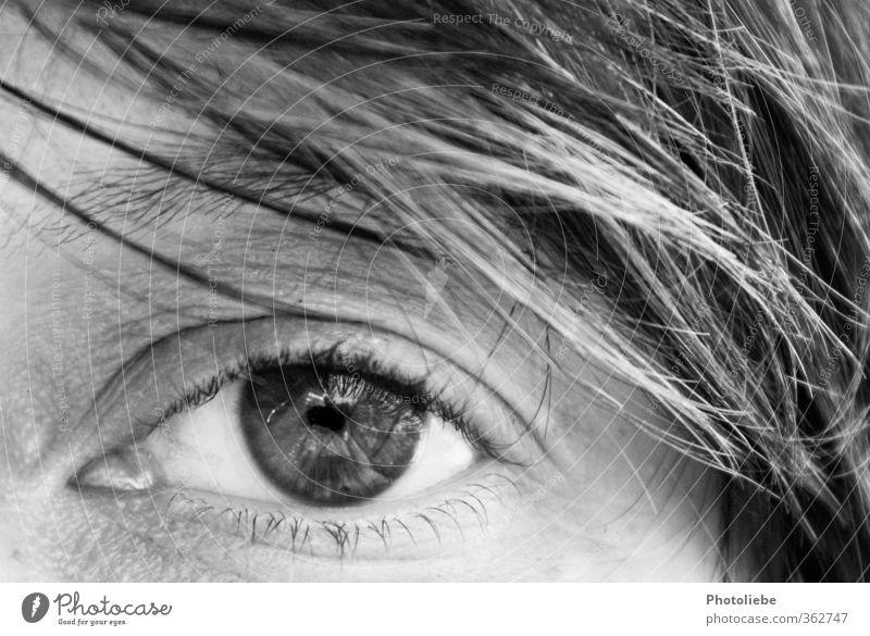 Blick Mensch feminin Junge Frau Jugendliche Auge 1 18-30 Jahre Erwachsene beobachten glänzend ästhetisch blond Freundlichkeit nah natürlich Neugier Wärme