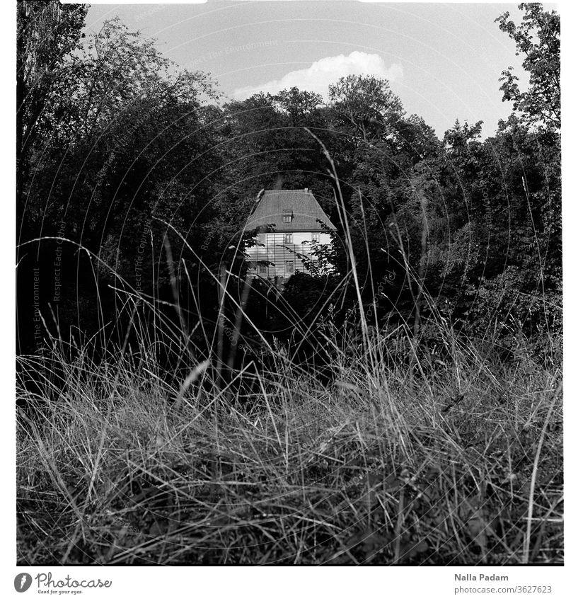 Schriftstellers Bleibe analog Mittelformat Haus 6x6 Ferien & Urlaub & Reisen Rollfilm Quadrat Einsamkeit Gras Park Ilmpark Park an der Ilm Gartenhaus