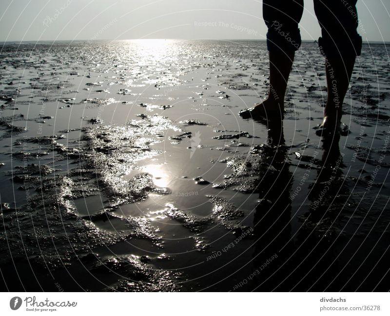 Füße im Watt Wasser Meer Fuß Landschaft Nordsee Wattenmeer