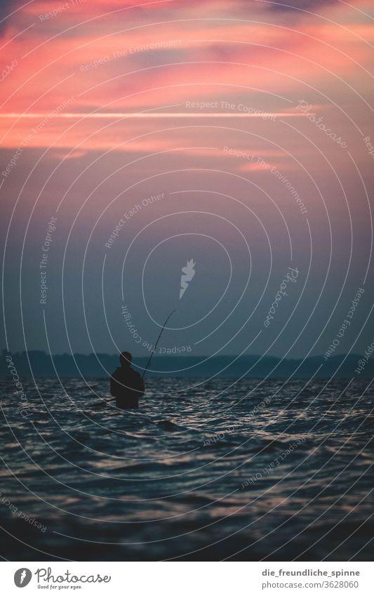 Angler im Meer Ostsee Sonne Sonnenaufgang Timmendorfer Strand Sonnenuntergang Dämmerung Farbfoto Außenaufnahme Ferien & Urlaub & Reisen Wasser Horizont Himmel