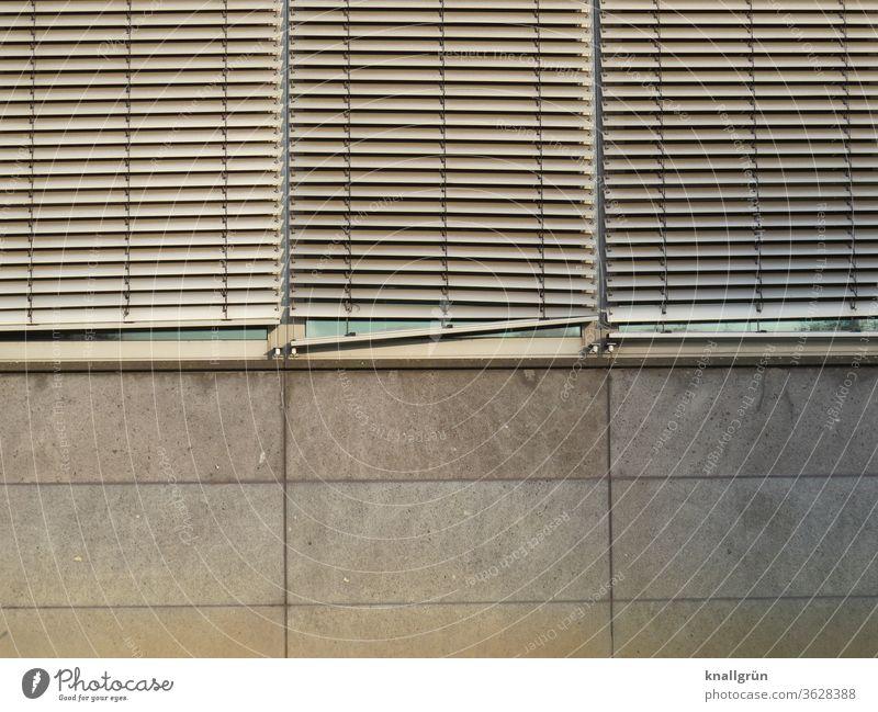 Drei heruntergelassene Lamellenjalousien an einem Bürogebäude Sichtschutz Strukturen & Formen Jalousie Außenaufnahme Fenster Muster Tag Licht & Schatten