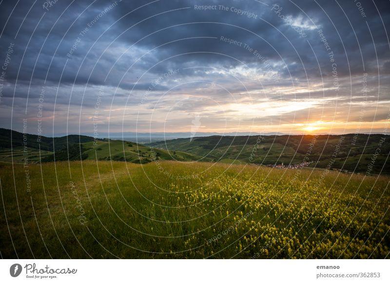 |700| Kaiserstuhl Ferien & Urlaub & Reisen Ausflug Freiheit Berge u. Gebirge wandern Umwelt Natur Landschaft Pflanze Himmel Wolken Sonne Frühling Sommer Klima