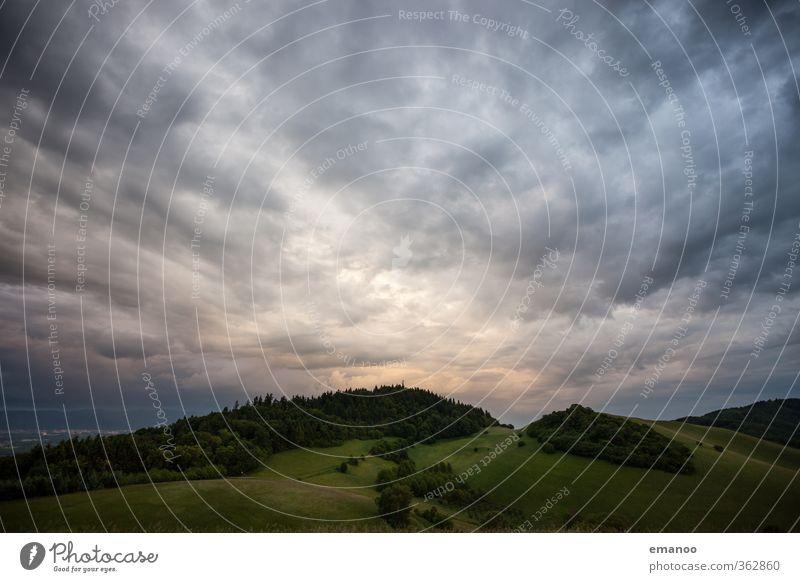 Kaiserstuhl Ferien & Urlaub & Reisen Ausflug Berge u. Gebirge wandern Umwelt Natur Landschaft Pflanze Luft Himmel Wolken Gewitterwolken Klima Wetter