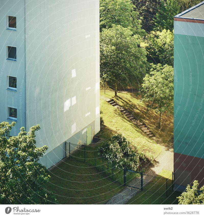 Spaltbares Material Schönes Wetter Pflanze Baum Gras Grünpflanze Wiese Bautzen Haus bevölkert Stadtrand Kleinstadt Deutschland Gebäude Plattenbau Mauer Wand