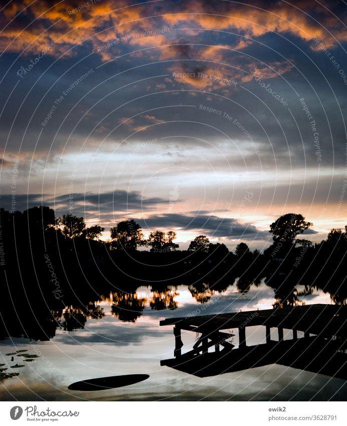 Ergeben Umwelt Natur Landschaft Pflanze Urelemente Wasser Himmel Anlegestelle Sträucher Baum Schönes Wetter Horizont Steg Holz leuchten glänzend Stimmung ruhig