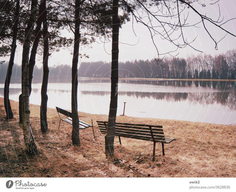 Nach und nach Umwelt Natur Landschaft Pflanze Wasser Himmel Wetter Klima Horizont Wolkenloser Himmel Schönes Wetter Gras Wald See Unendlichkeit Bank Zukunft