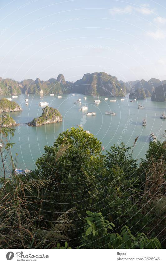 die Schönheit eines erstaunlichen Naturreiseziels Vietnam MEER Bucht Asien reisen Wasser halong Landschaft Meer Insel Felsen Boot Urlaub Meereslandschaft