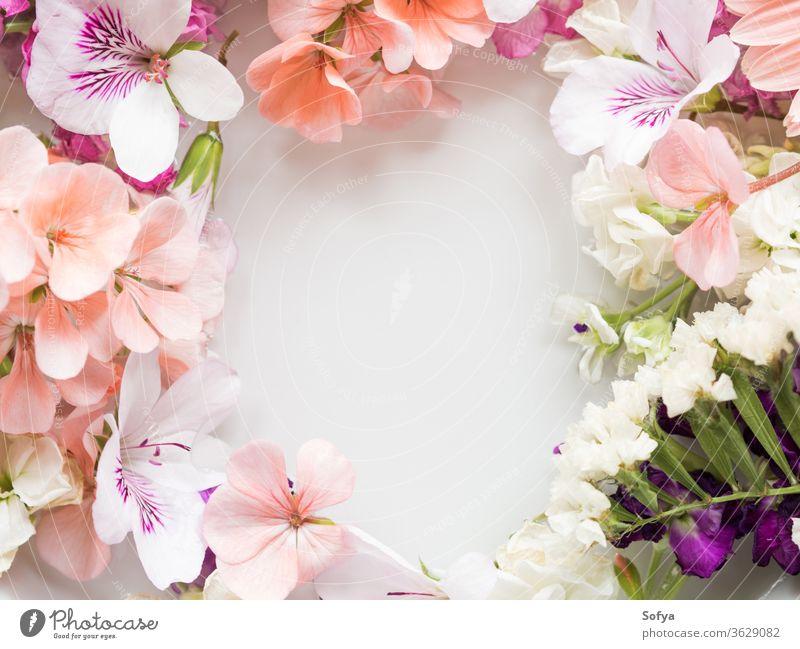 Wunderschöne rosa und weiße Blumen im Wasser Frühling Hintergrund Blütenblatt Farbe Hochzeit Pastell Textur Sommer geblümt botanisch Natur natürlich Spa