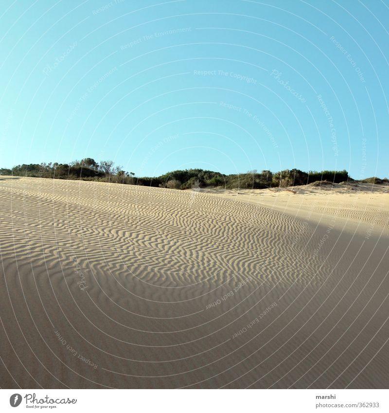 Spuren im Sand Natur Landschaft Sommer Klima Schönes Wetter Wärme Dürre Küste Strand Meer trocken Wüste Südafrika Düne Himmel Ferne Ferien & Urlaub & Reisen
