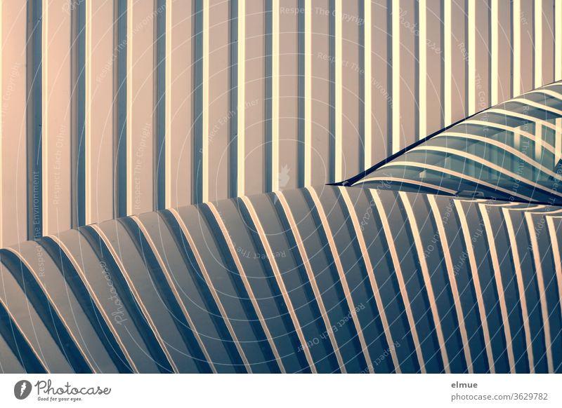 auf der Kühlerhaube und der Frontscheibe eines Autos spiegeln sich die Streifen eines Metalltores Spiegelung Irritation Linie Reflexion & Spiegelung Schatten