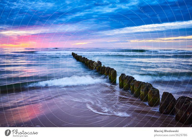 Alter hölzerner Wellenbrecher bei violettem Sonnenuntergang. Strand Natur MEER baltisch Buhne Herrzezyno Polen Landschaft Himmel schön Horizont Wasser winken